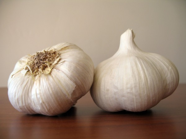health Benefit of garlic