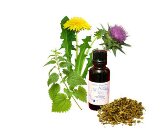 Hot flash, menopause, estrogen, acupuncture, yoga, cucumber, Spearmint, sarsaparilla, red raspberry leaf, damiana, licorice root, chaste berry, motherwort, wild yams, soy foods, sage tea, vitamin c, vitamin e, Chickweed Tincture, Black Cohosh, red clover, evening primrose oil, flaxseed oil